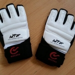 Fusion Kung Fu sparring gloves