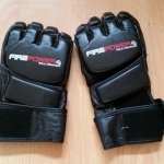 Fusion Kung Fu sparring mitts